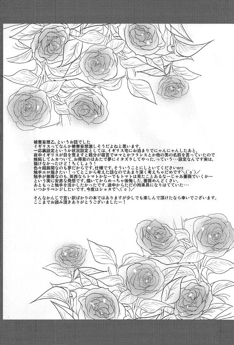 El cautivo de la rosa 27