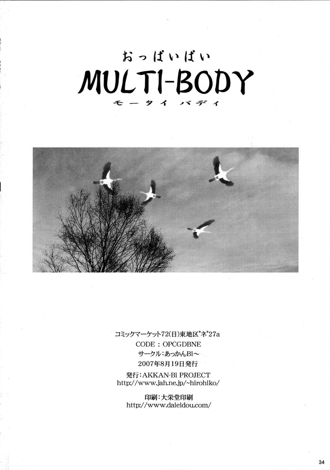 MULTI-BODY 33