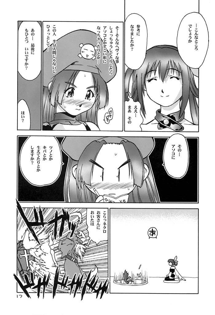 Dizzy-san No Shippo 16