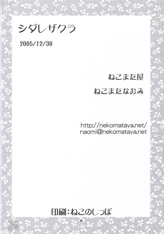 Shidare Zakura / Weeping Cherry 23