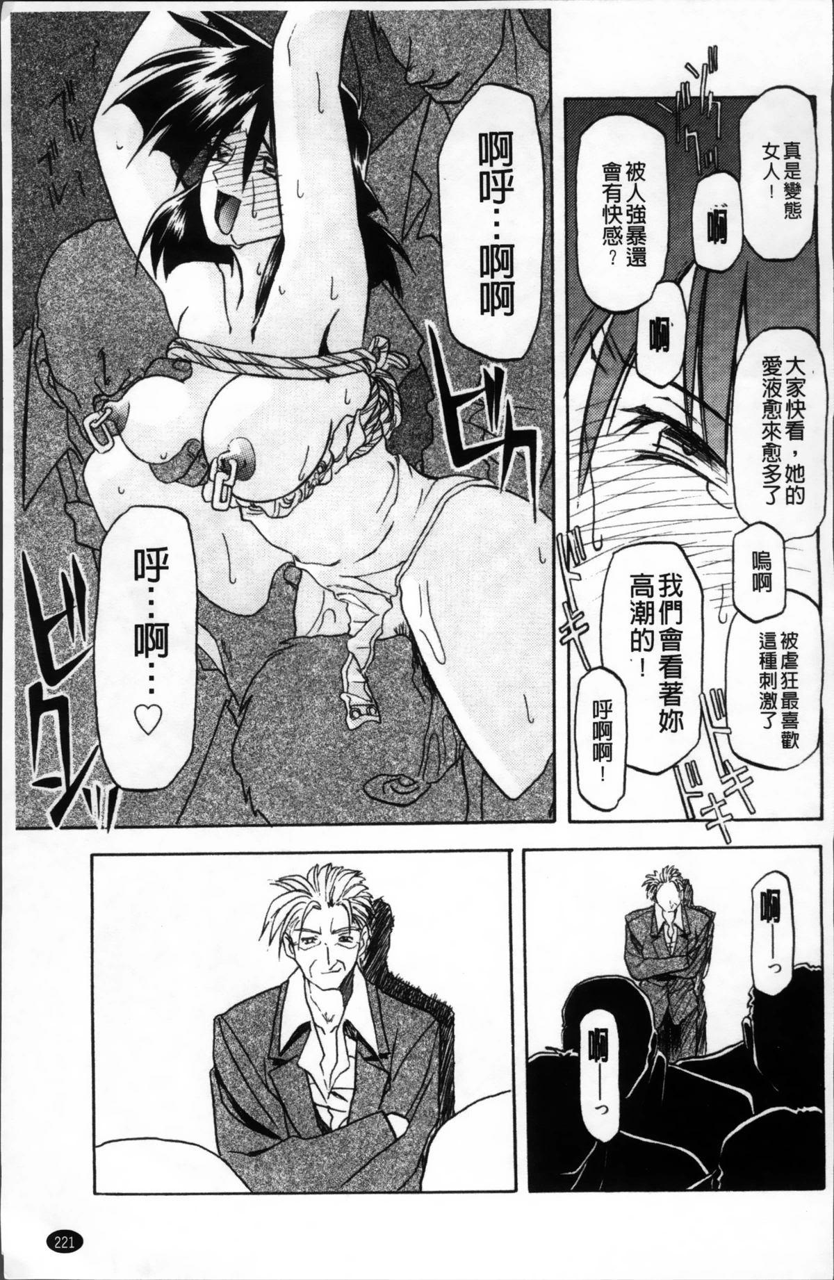 Hiiro no Koku Kanzenban   緋色之刻 完全版 224