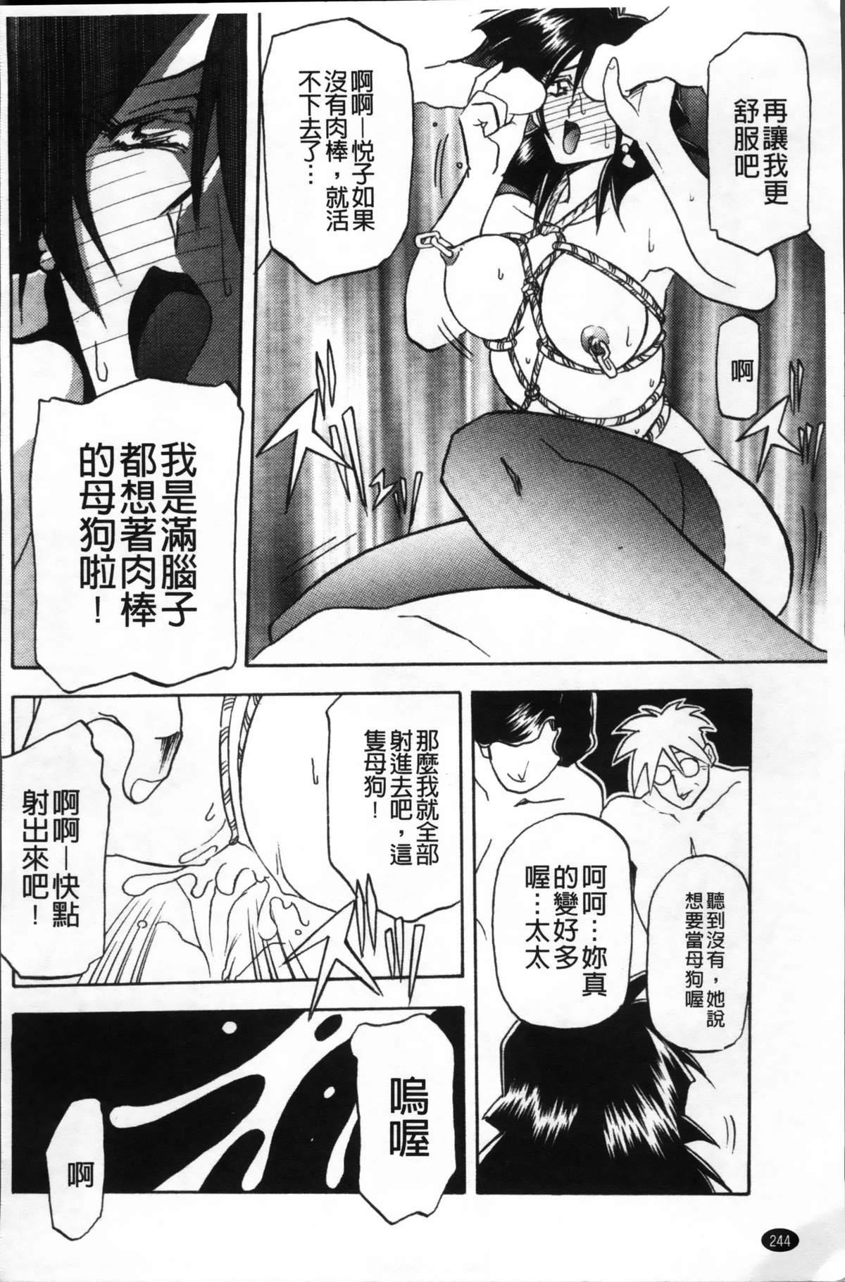 Hiiro no Koku Kanzenban   緋色之刻 完全版 247