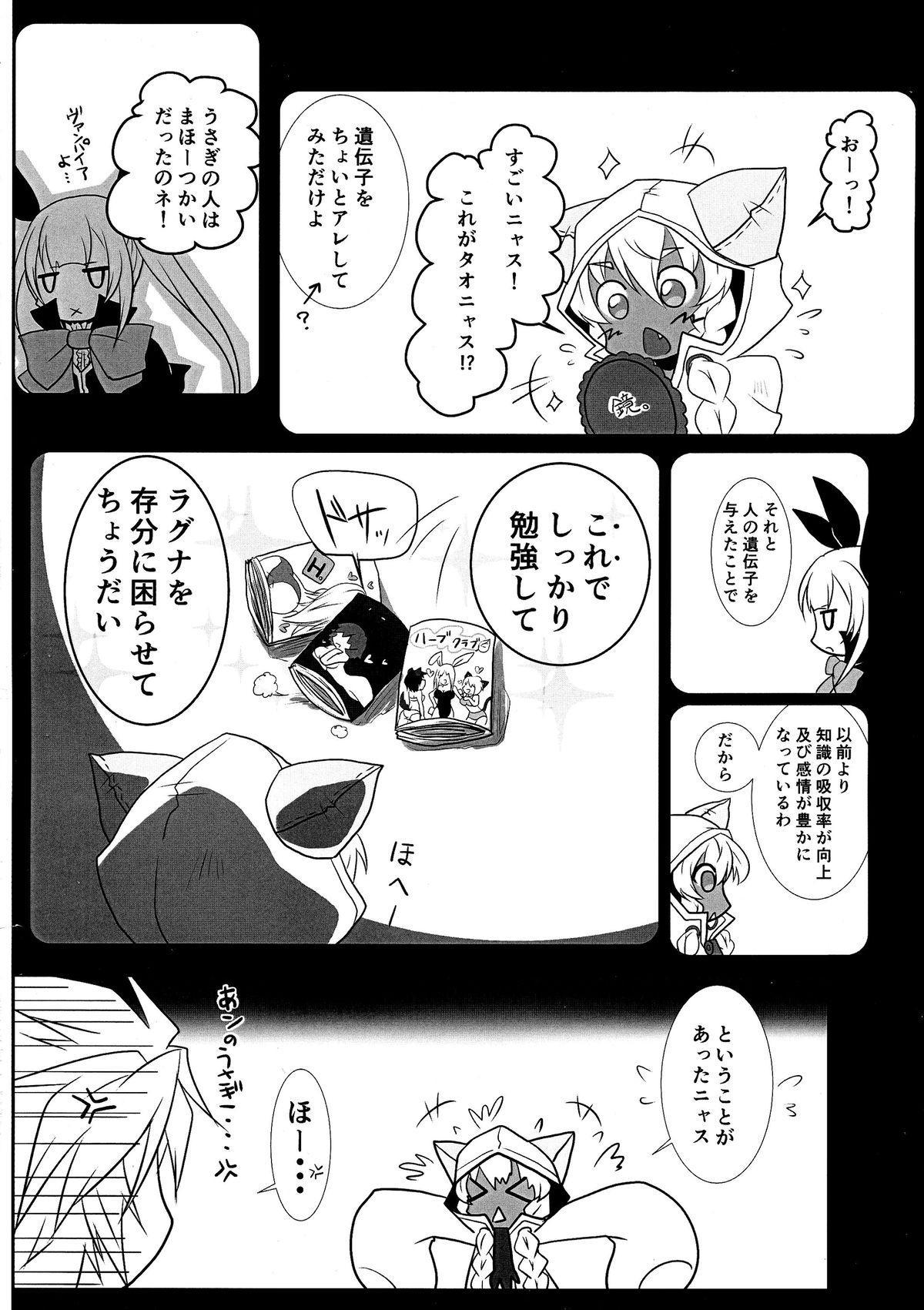 Tao no Ongaeshi 15