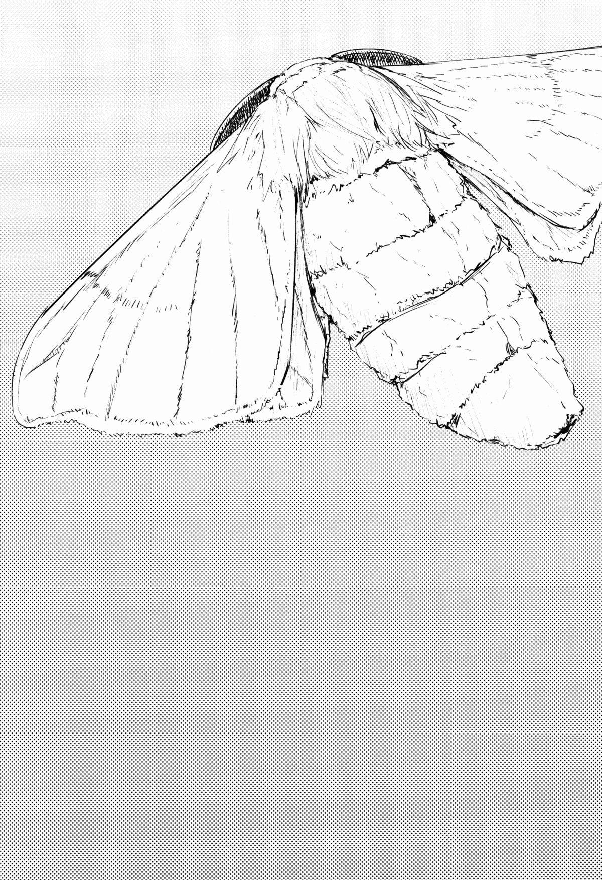(COMIC1☆9) [Sakekan Memorial (SOLOPIPB)] Shiragasane -Tamoto-   Layers of White 2 [English] [rampantserenity] 2
