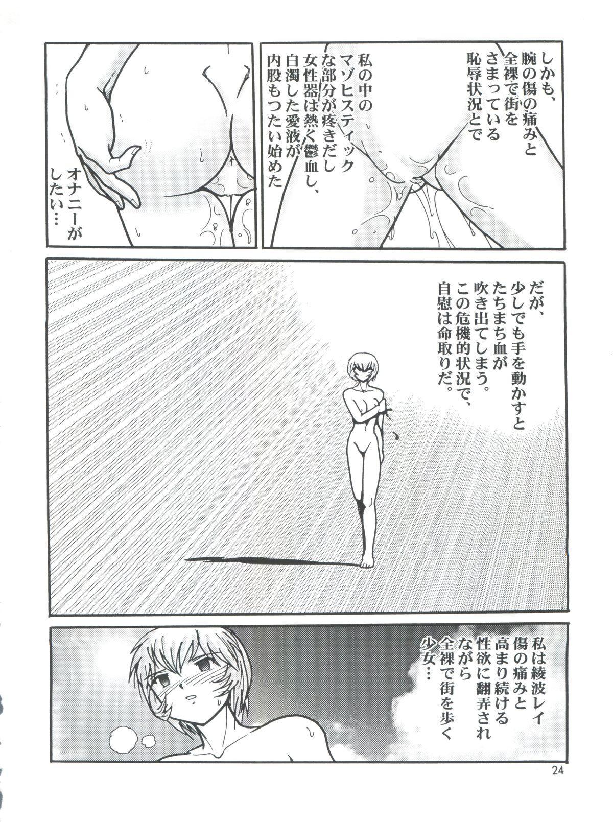 Fight Ippatsu 23