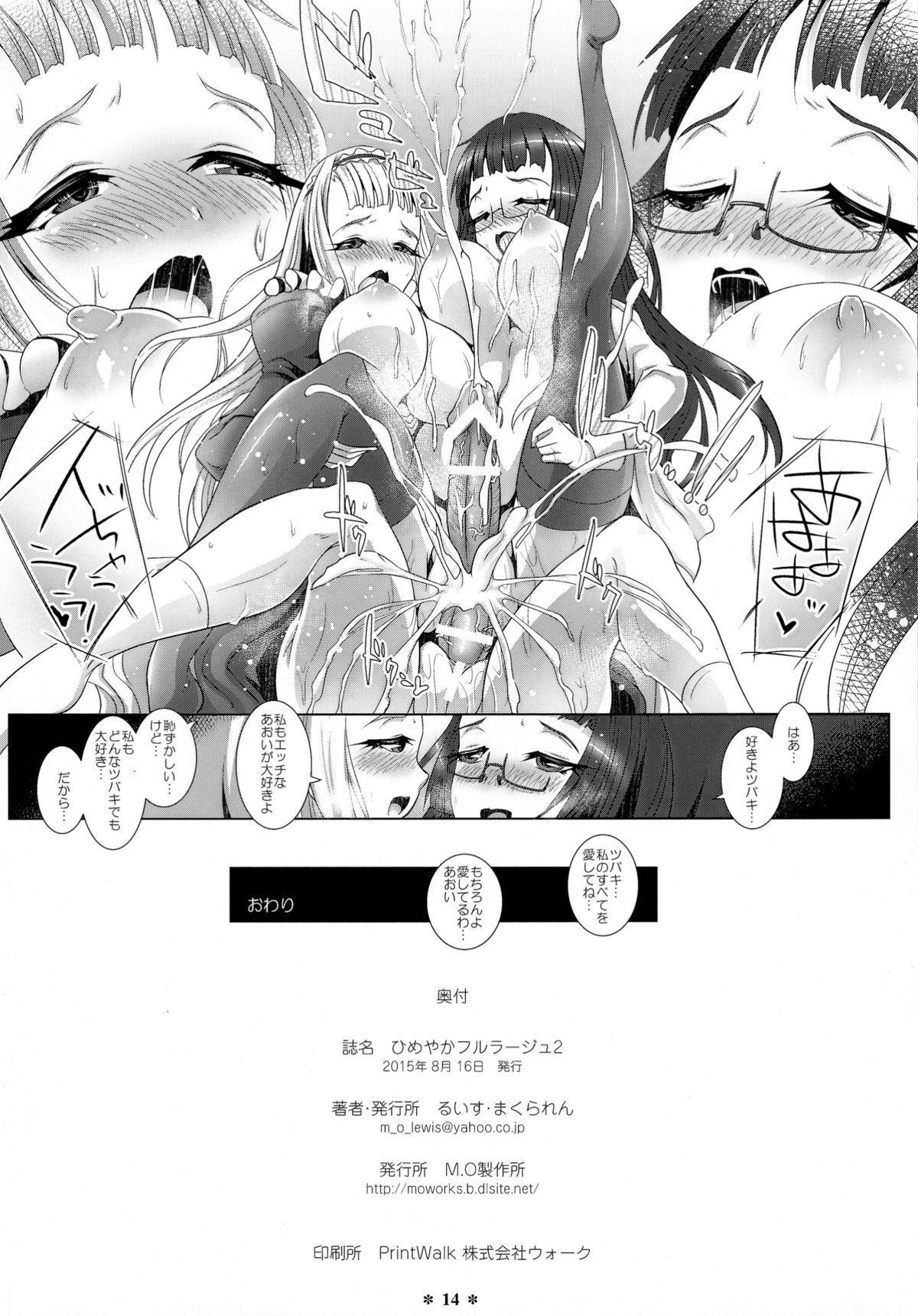 Himeyaka Full Rage 2 13