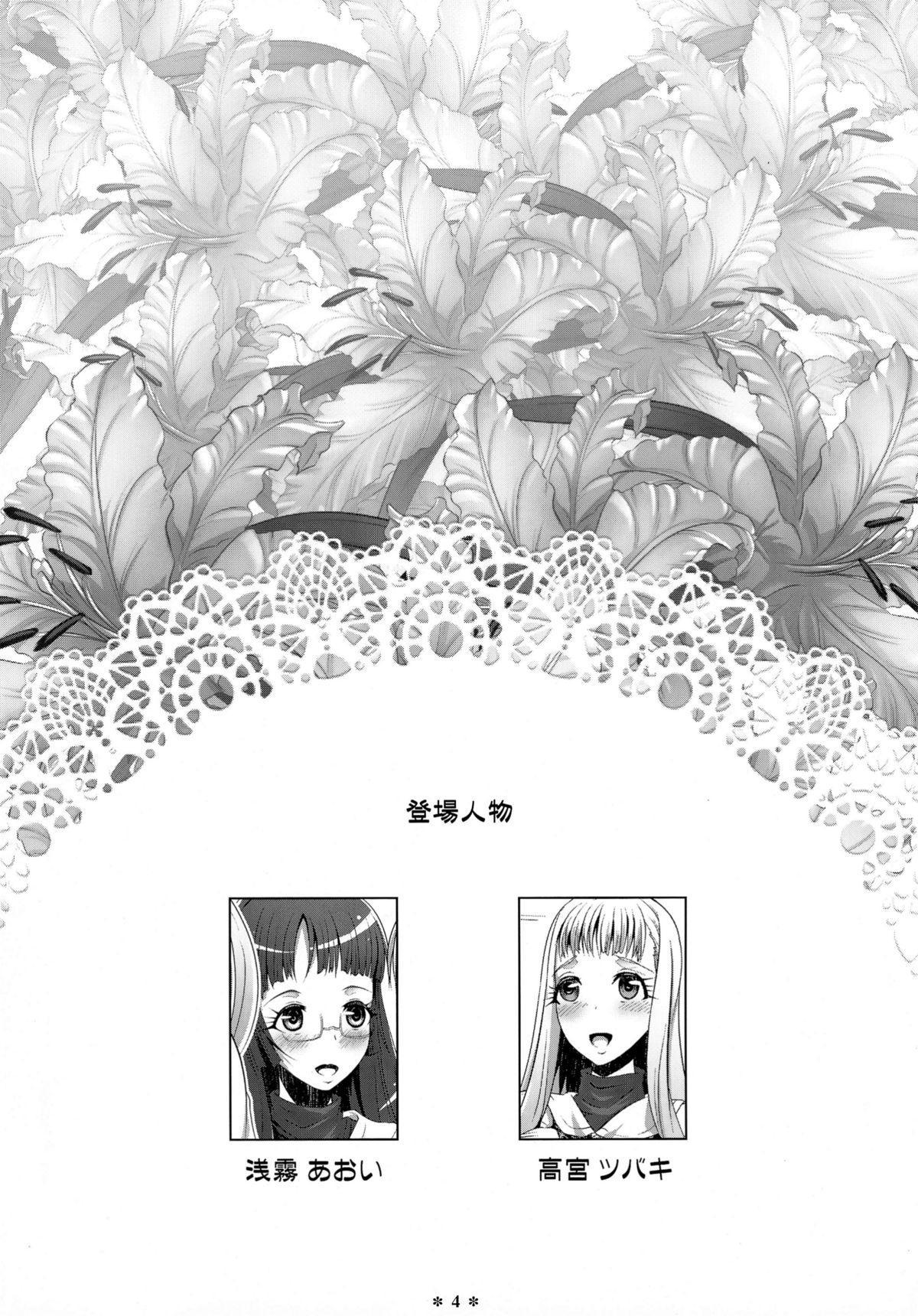 Himeyaka Full Rage 2 3