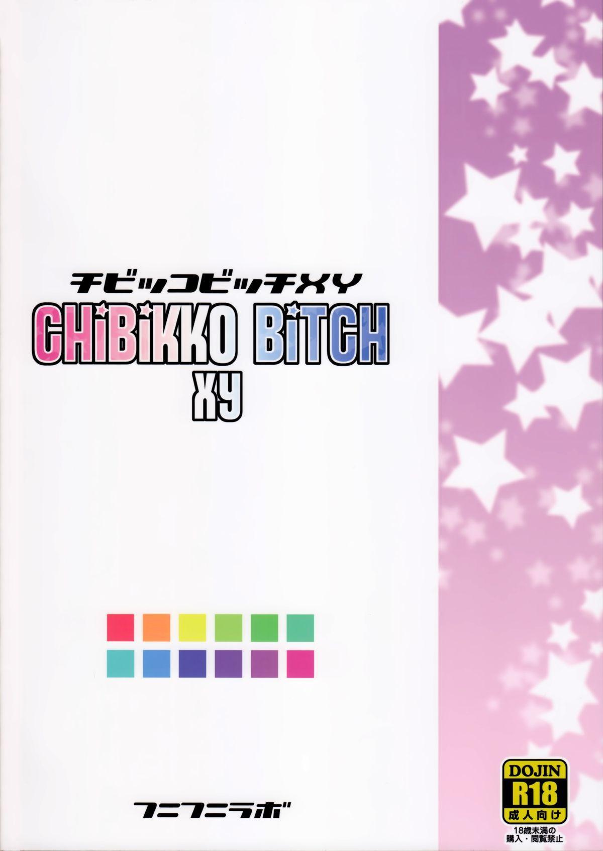 Chibikko Bitch XY 33