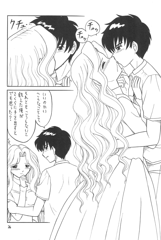 Higawari Obentou 25