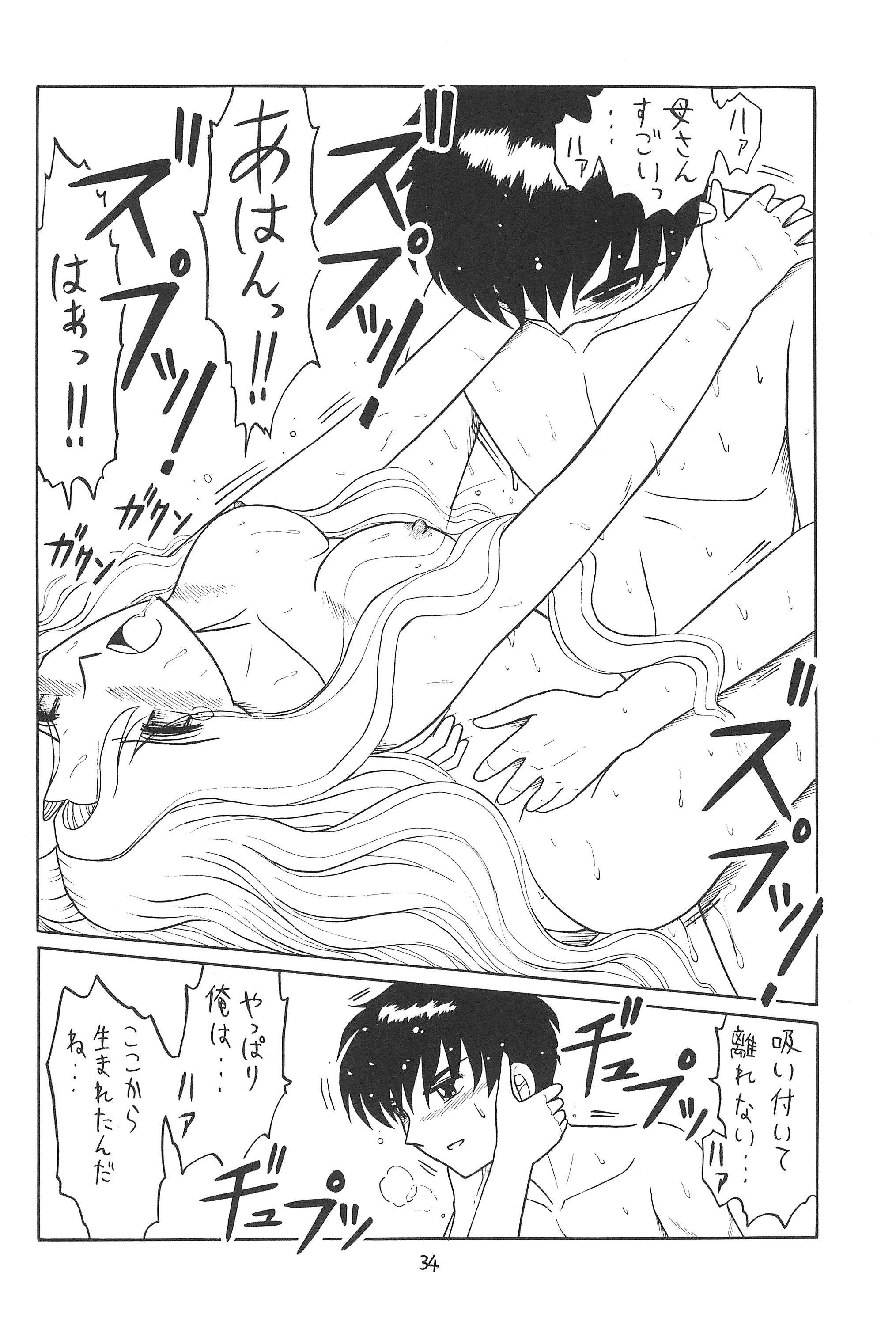 Higawari Obentou 33