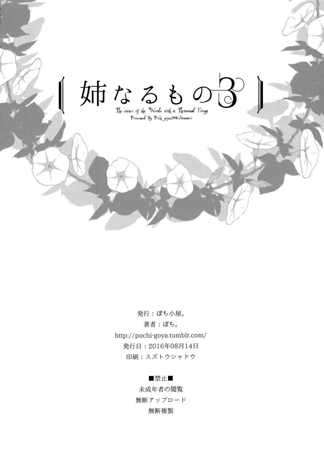 Ane Naru Mono 3 | An Elder Sister 3 25