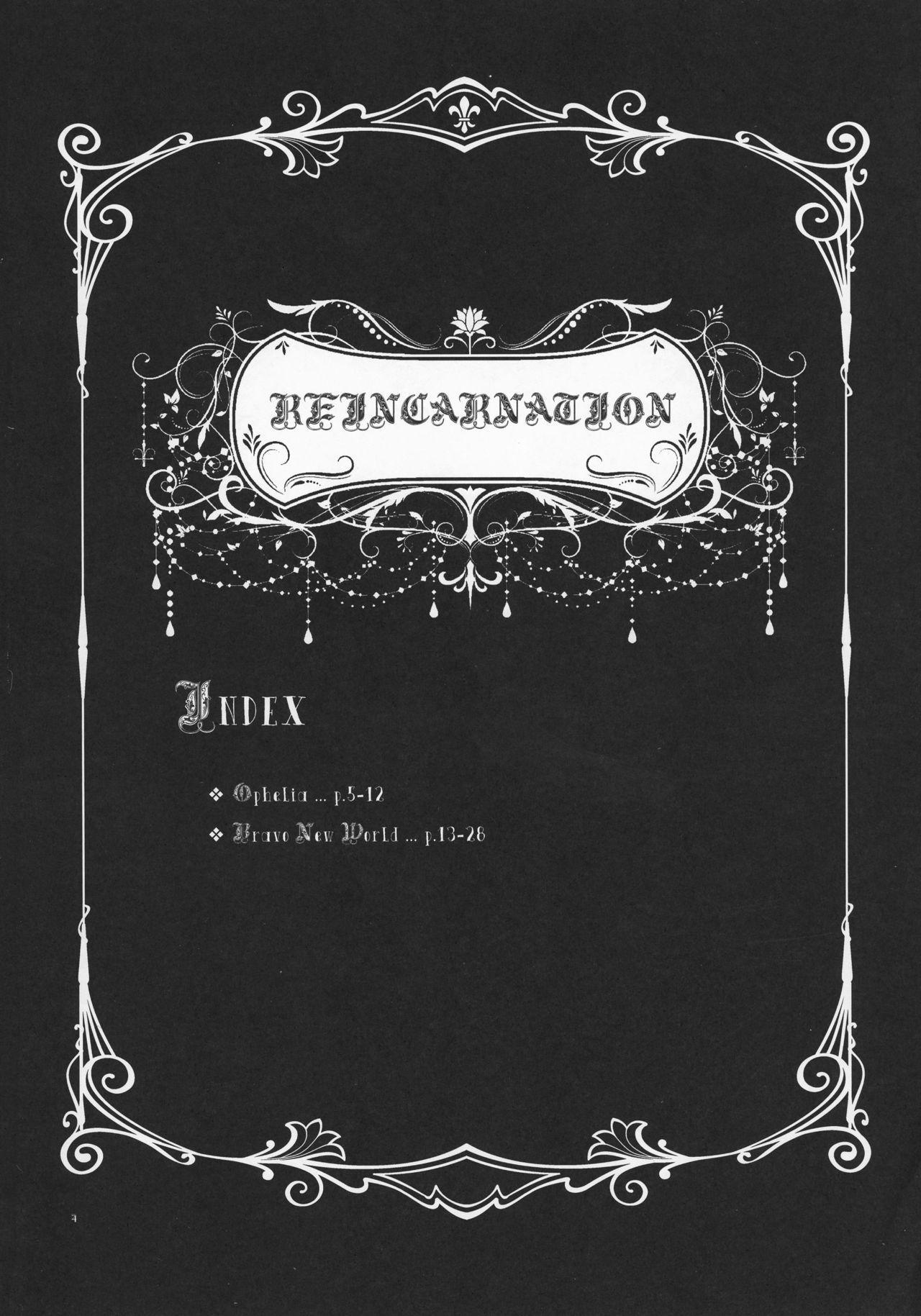 RE- Incarnation 3