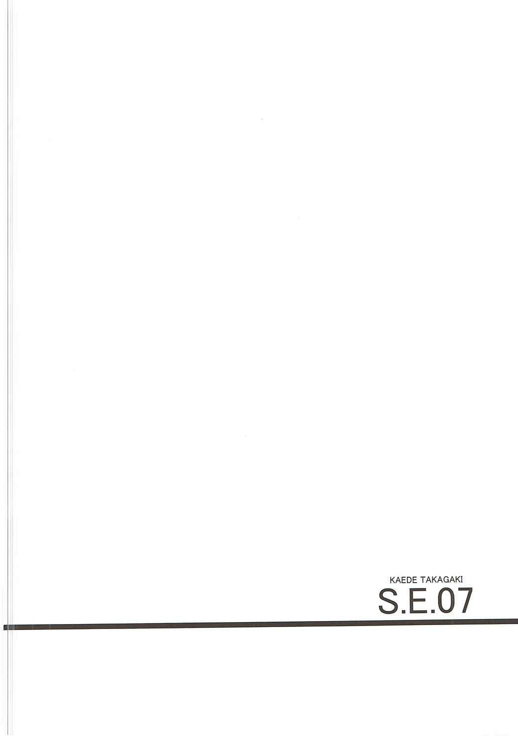 S.E.07 3