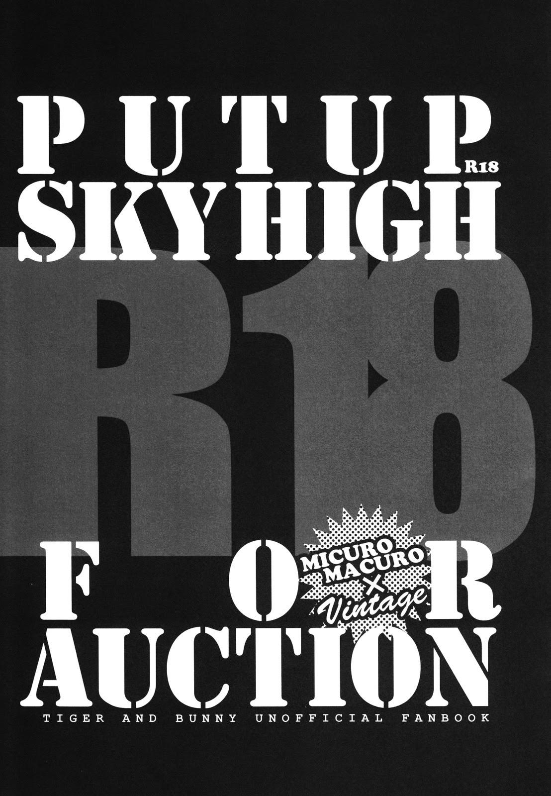 PUT UP SKYHIGH FOR AUCTION 1