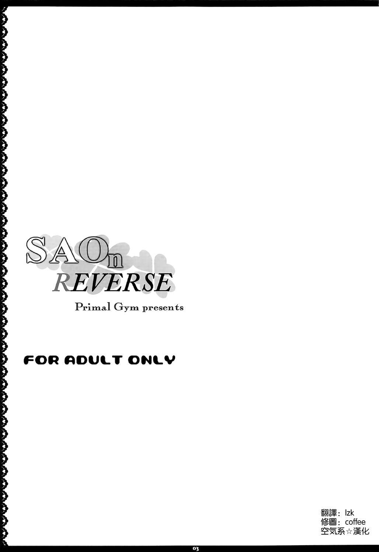SAOn REVERSE 2