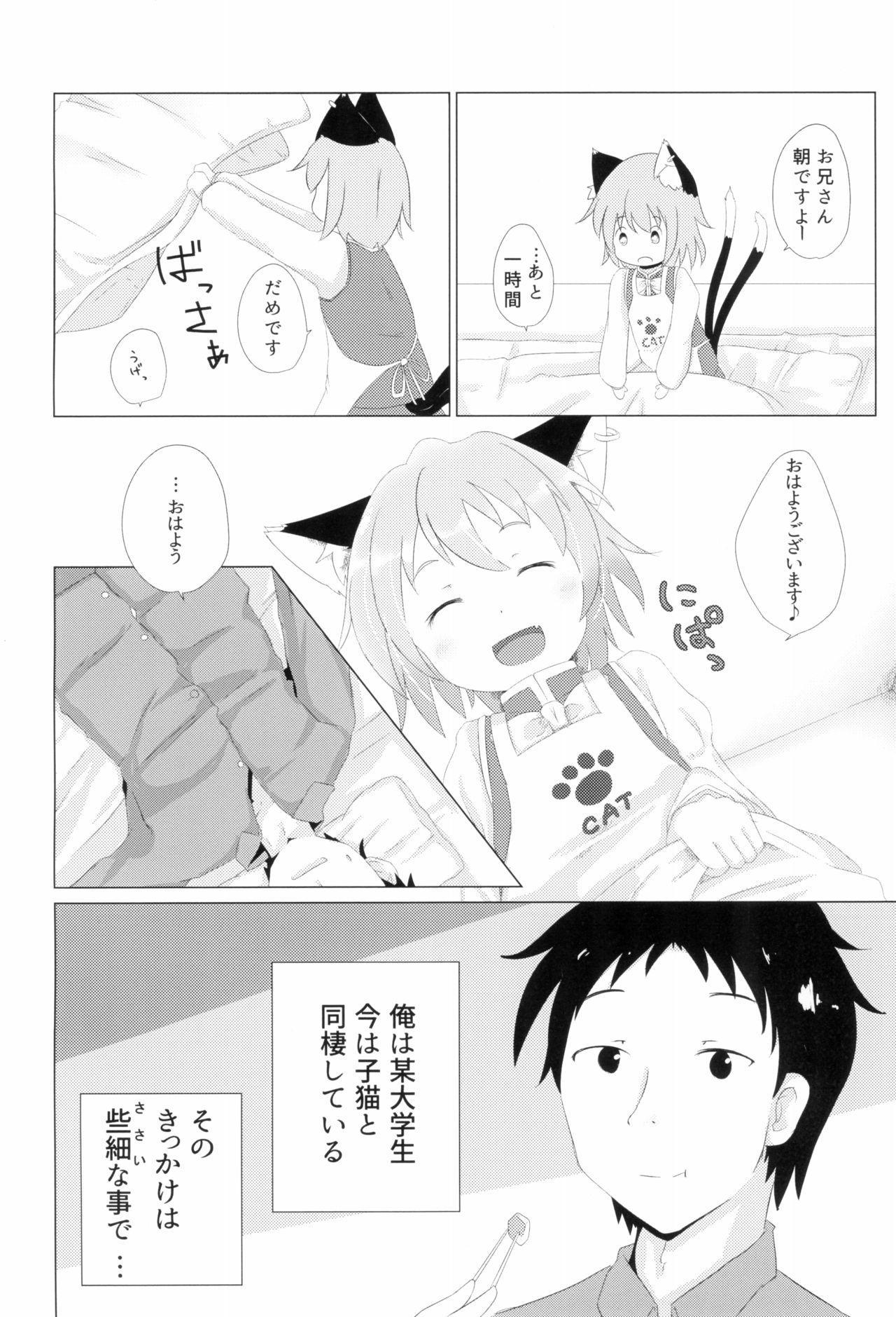 Koneko no Yomeiri 3
