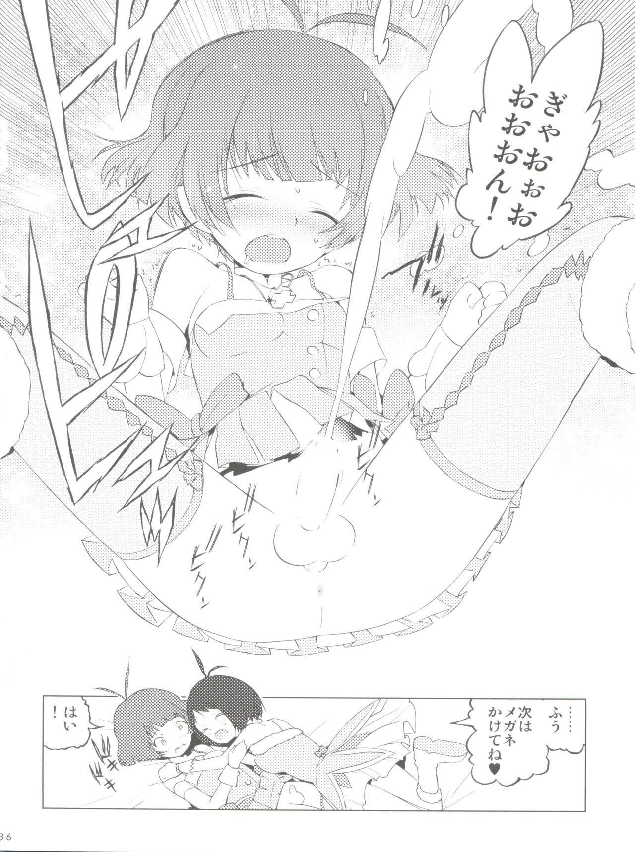 Ryo-chin Land 35