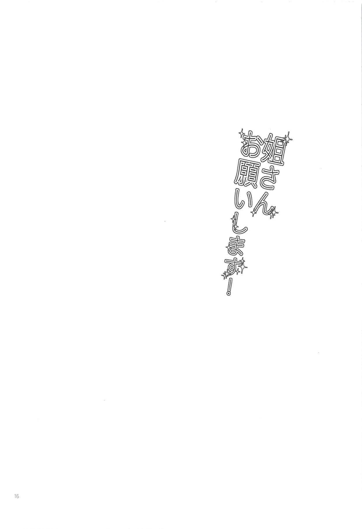 Nee-san Onegaishimasu! 14