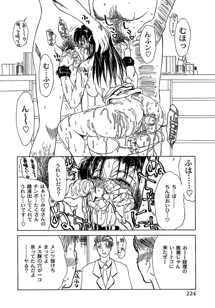 Enbi Shokitanpenshuu 224