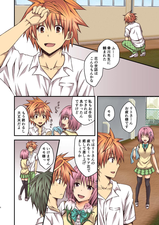 Riko to Milkea no Hana 3