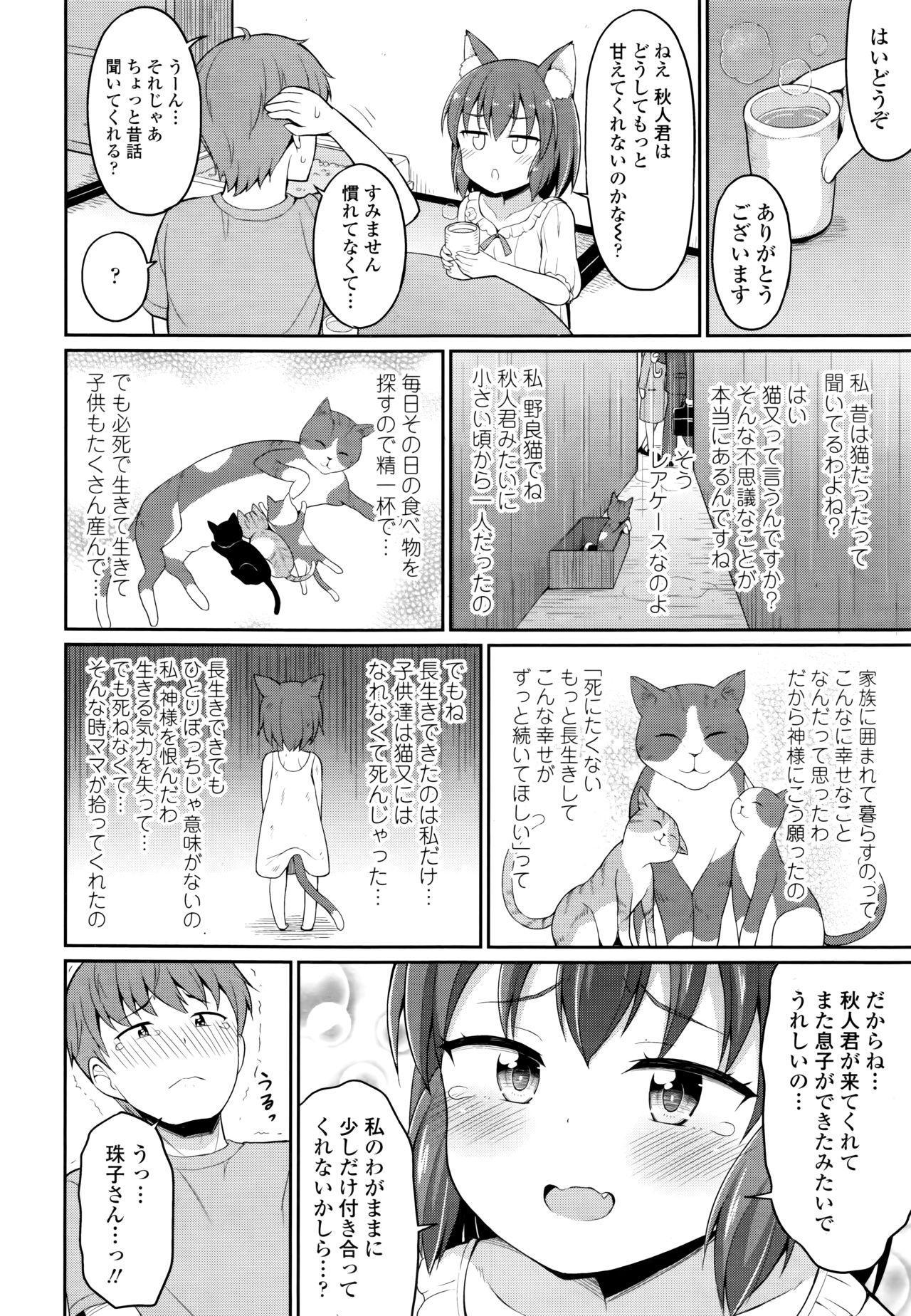 Towako 6 297