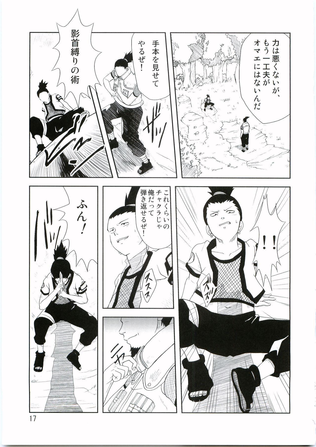 Shinobi no Kokoroe 17