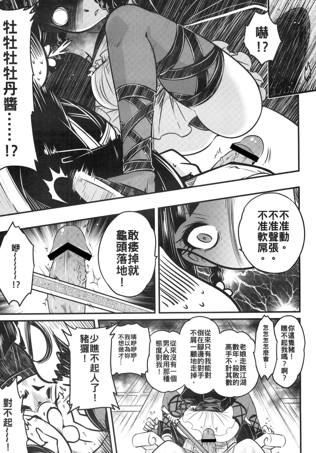 Hyakkasou3 《Hekigan rasetsu no gyakushuu》 6