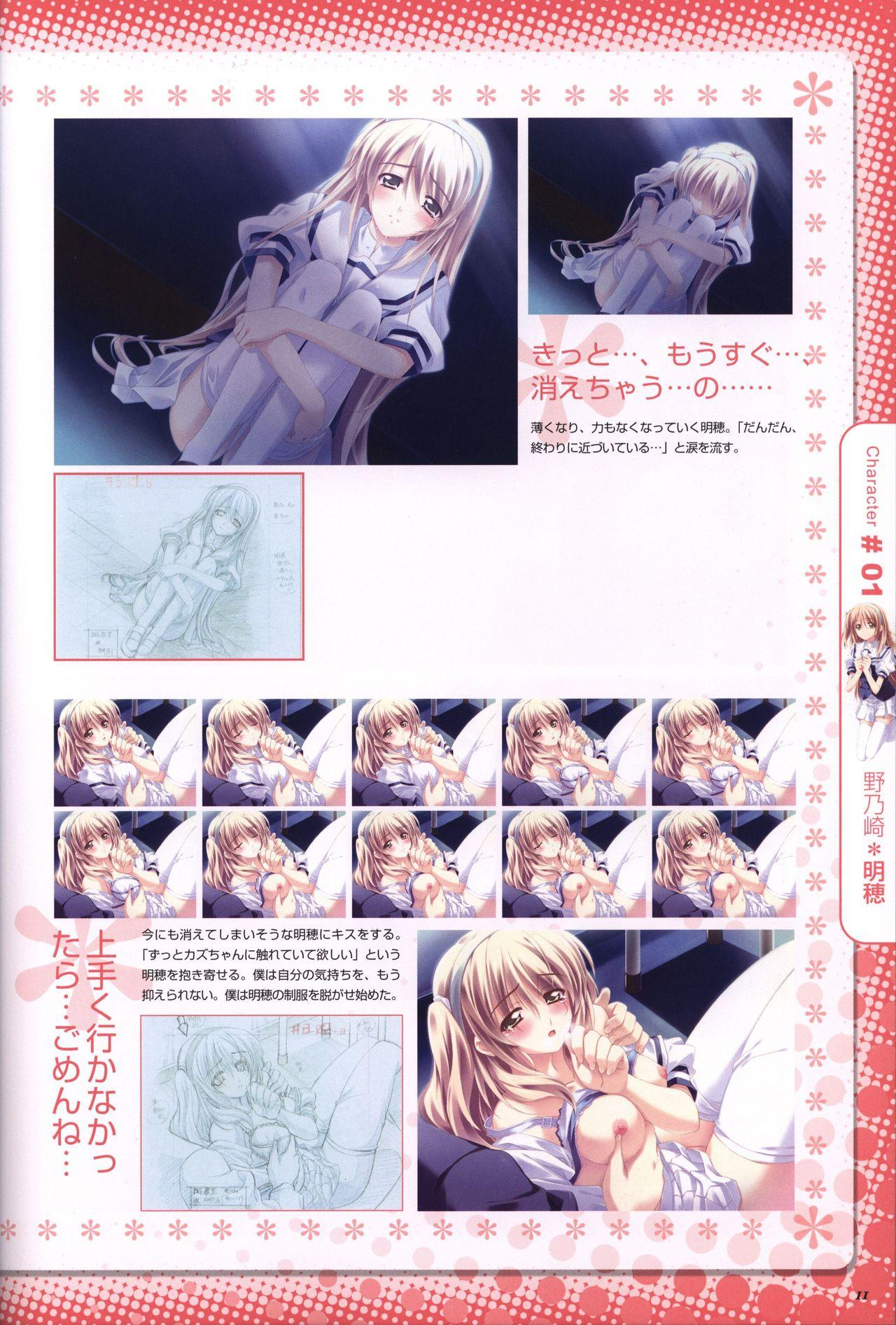 Moshimo Ashita ga Harenaraba official fanbook 11