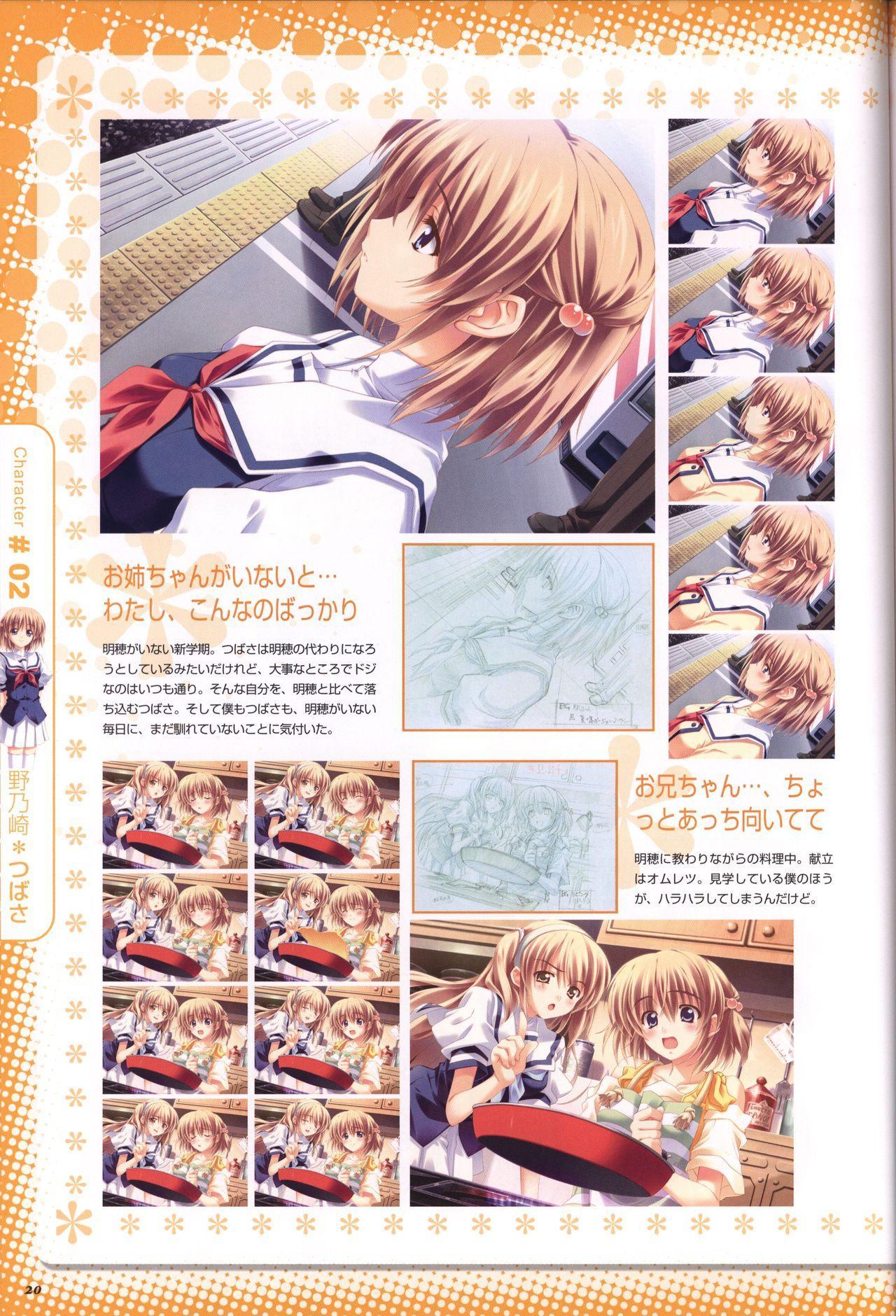 Moshimo Ashita ga Harenaraba official fanbook 20