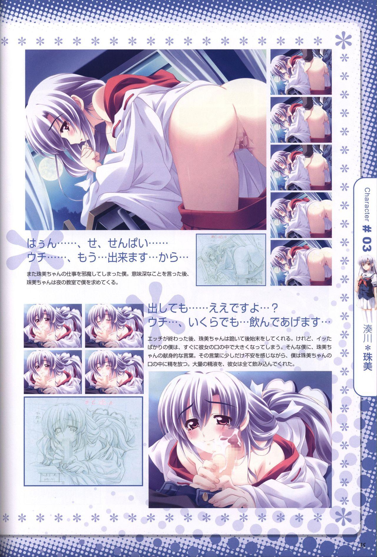 Moshimo Ashita ga Harenaraba official fanbook 35