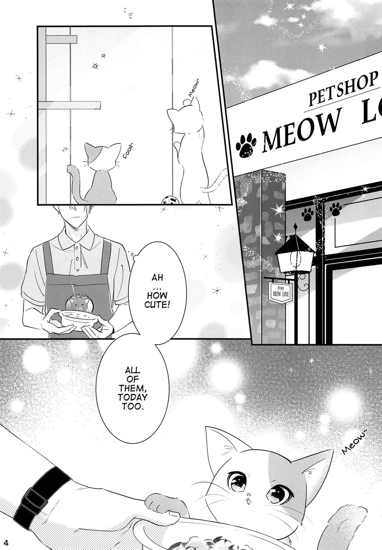Koneko no Ronron   Ronron, the Little kitten 2