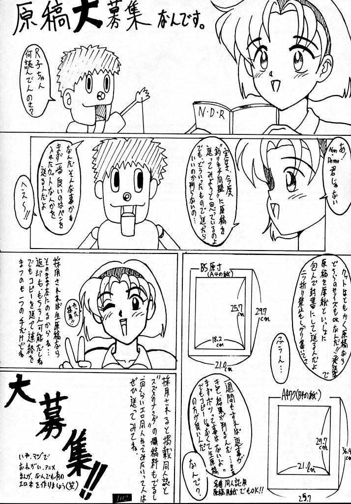 Zenigata NAN DEMO-R 100