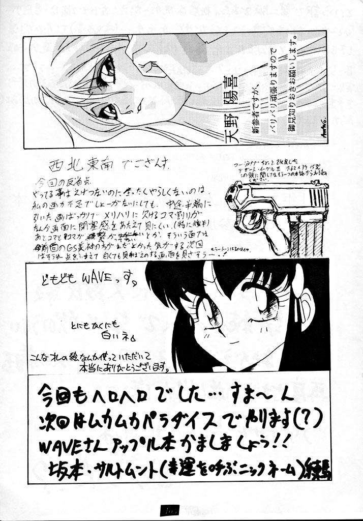 Zenigata NAN DEMO-R 103