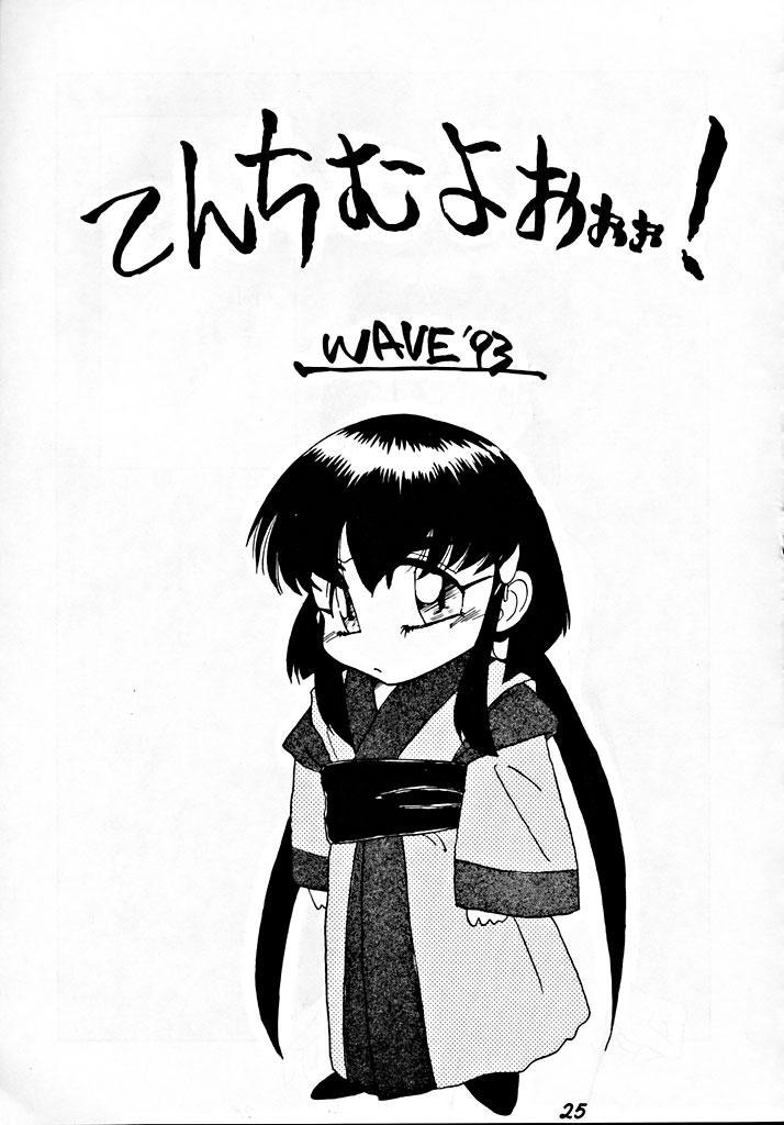 Zenigata NAN DEMO-R 23
