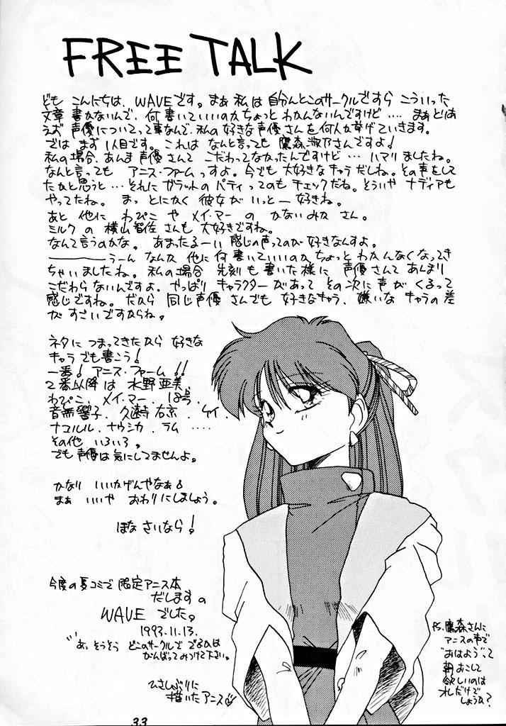 Zenigata NAN DEMO-R 31