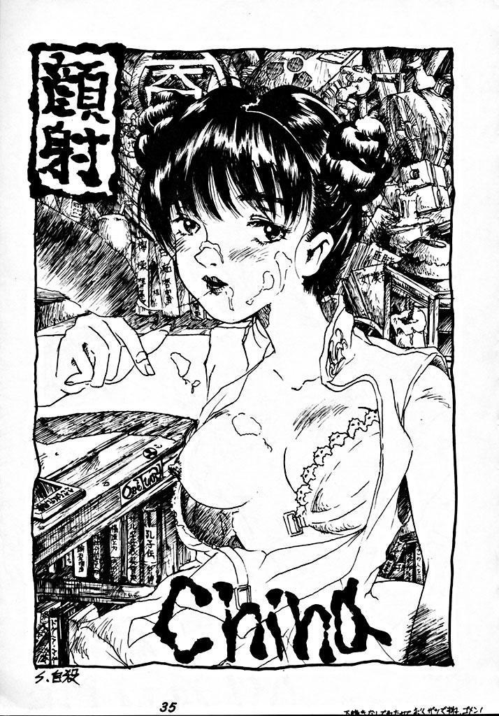 Zenigata NAN DEMO-R 33