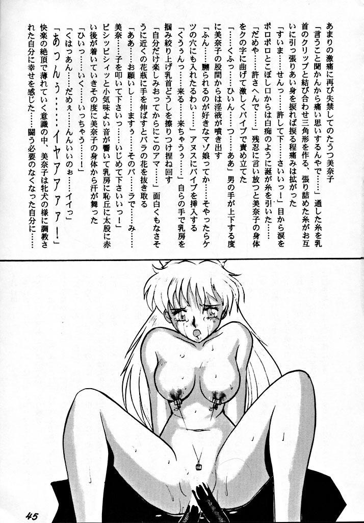 Zenigata NAN DEMO-R 43