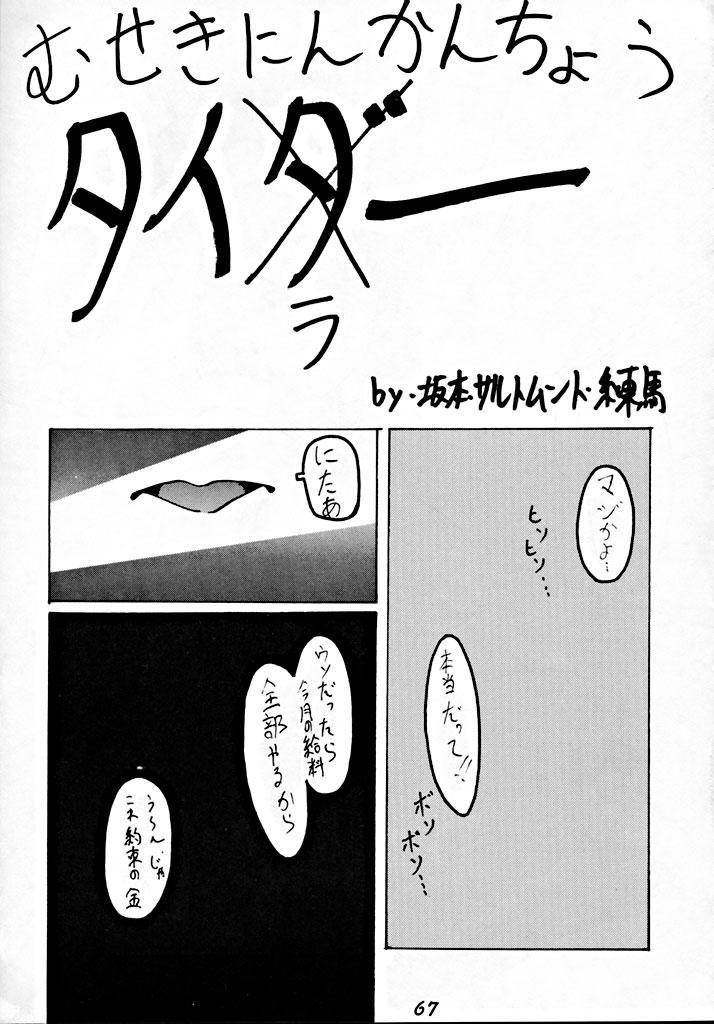 Zenigata NAN DEMO-R 65