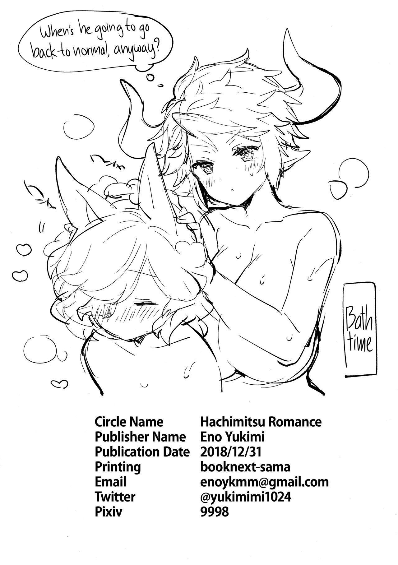 (C95) [Hachimitsu Romance (Eno Yukimi)] Drang to Sturm-dono ga OneShotax Suru Hon | Drang and Sturm-dono Oneshota Sex Book (Granblue Fantasy) [English] {RedLantern} 29