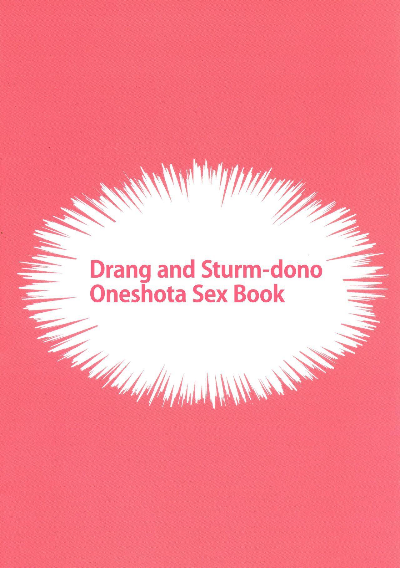 (C95) [Hachimitsu Romance (Eno Yukimi)] Drang to Sturm-dono ga OneShotax Suru Hon | Drang and Sturm-dono Oneshota Sex Book (Granblue Fantasy) [English] {RedLantern} 3