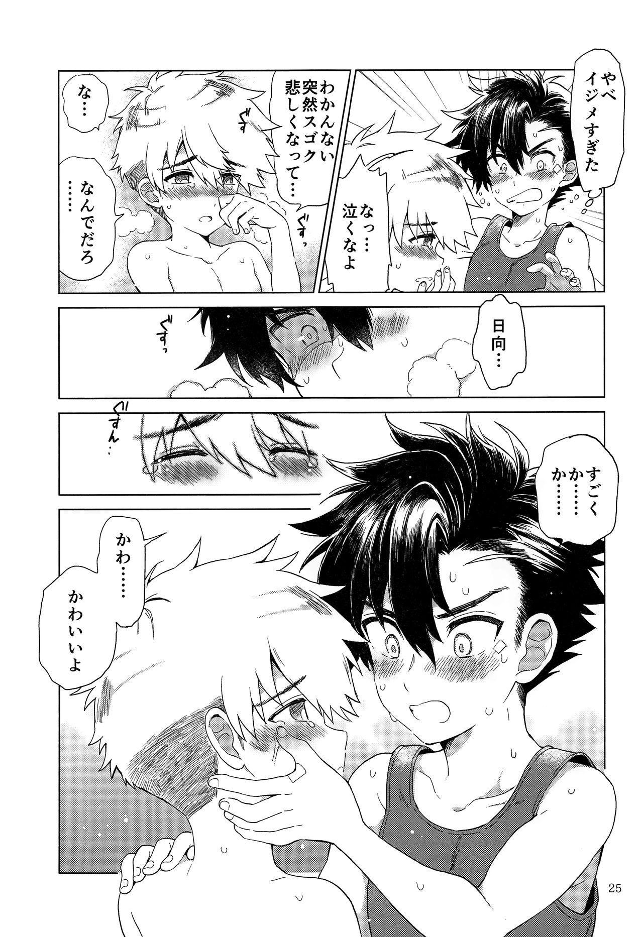 Heart Switch 25