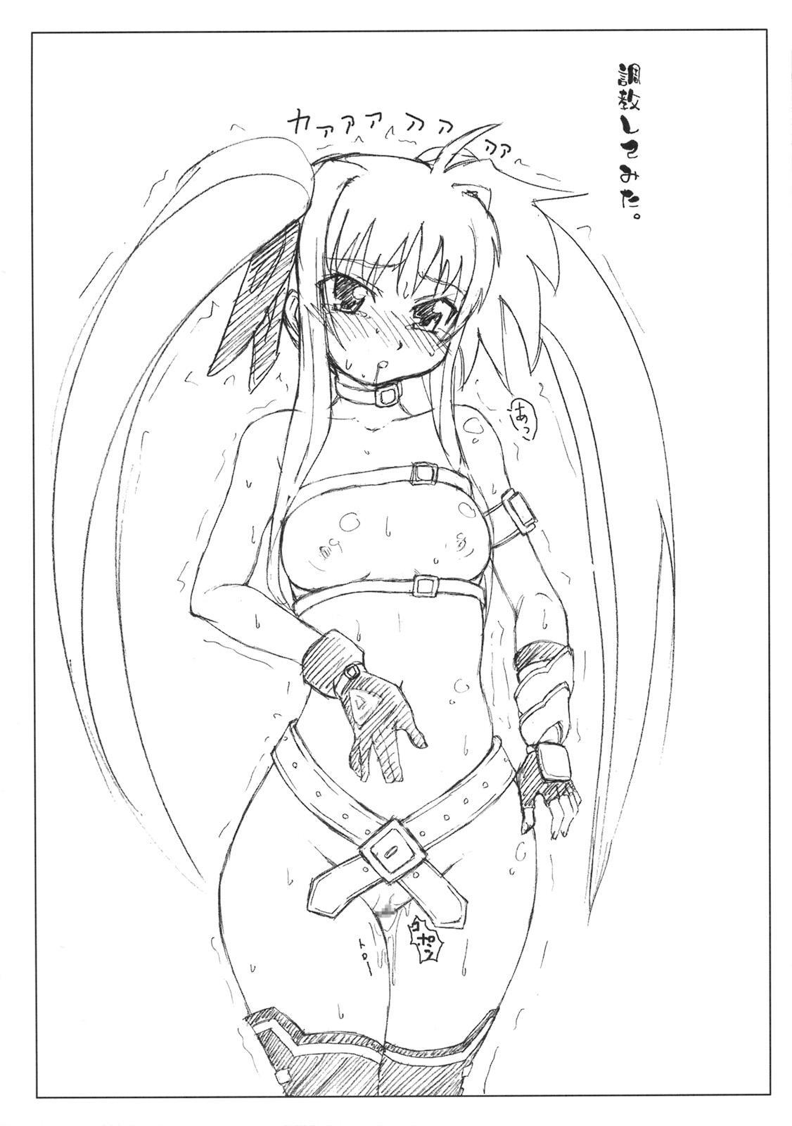 Gekkan Fate. GX 20
