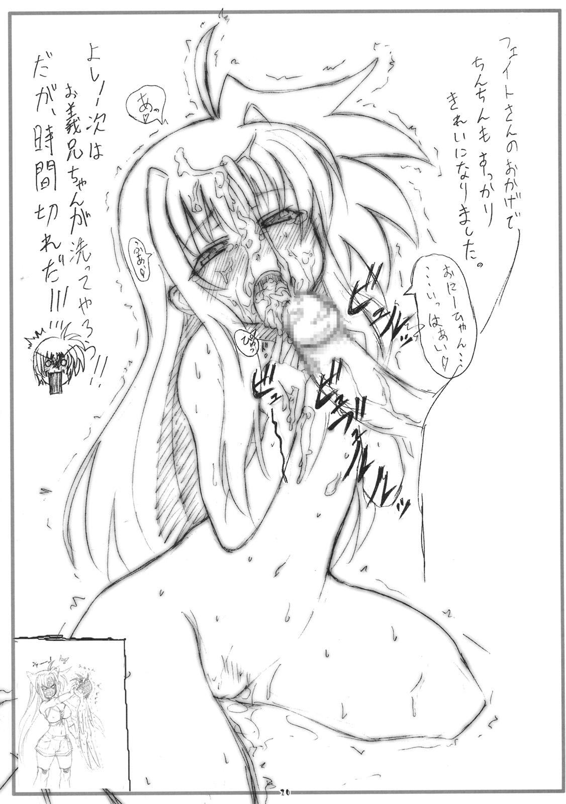 Gekkan Fate. GX 27