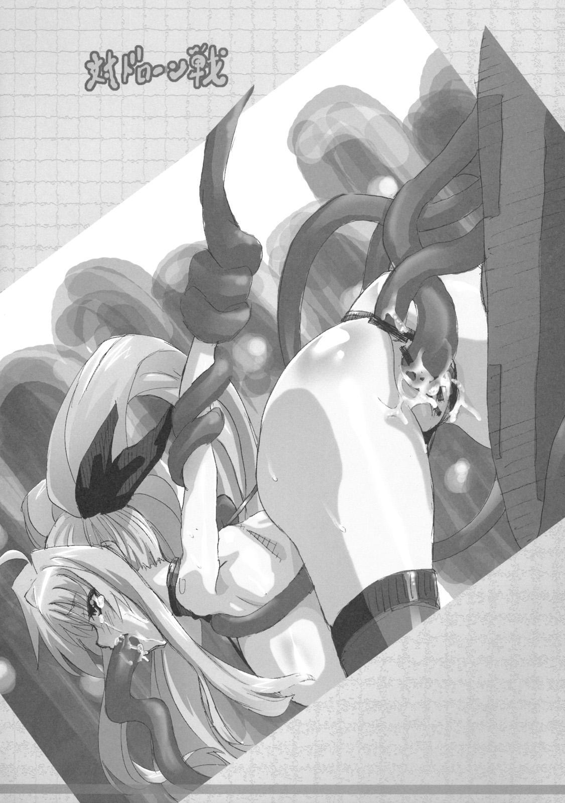 Gekkan Fate. GX 28