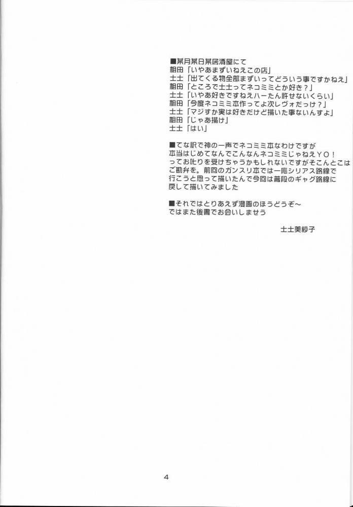Twin Tail Treila - Tsuinteira Toriera 2