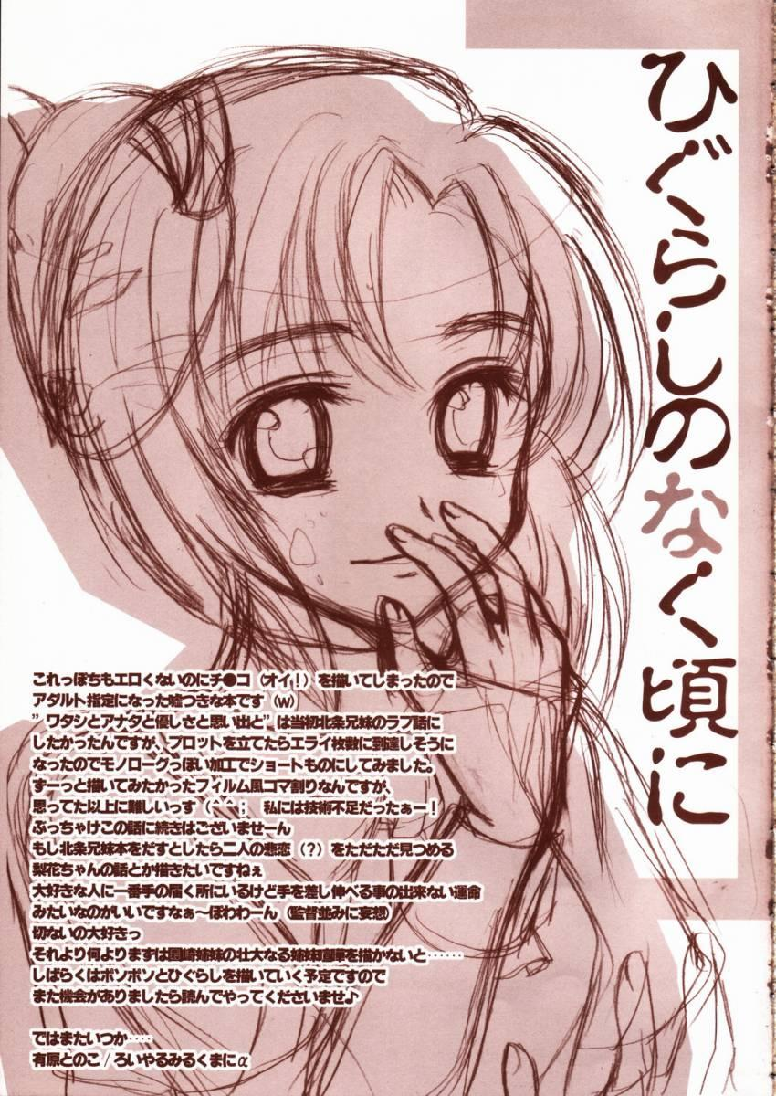 Higurashi no namida 19