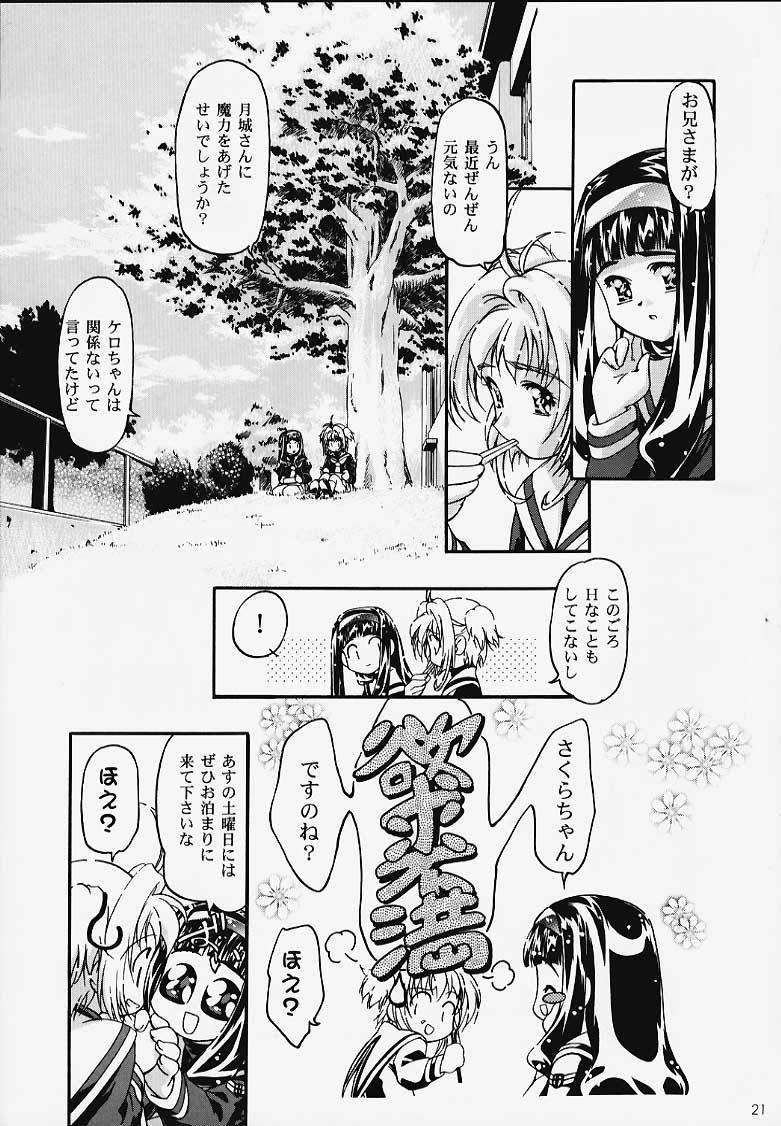 GC Sakura 19