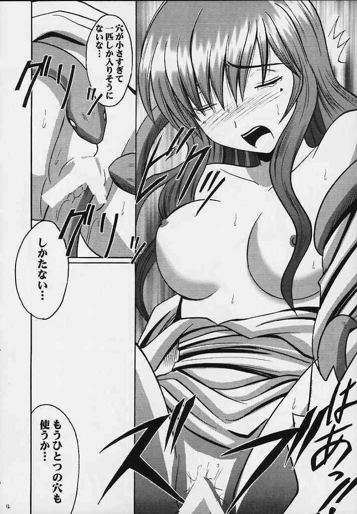 Seisen no Kizuato 10