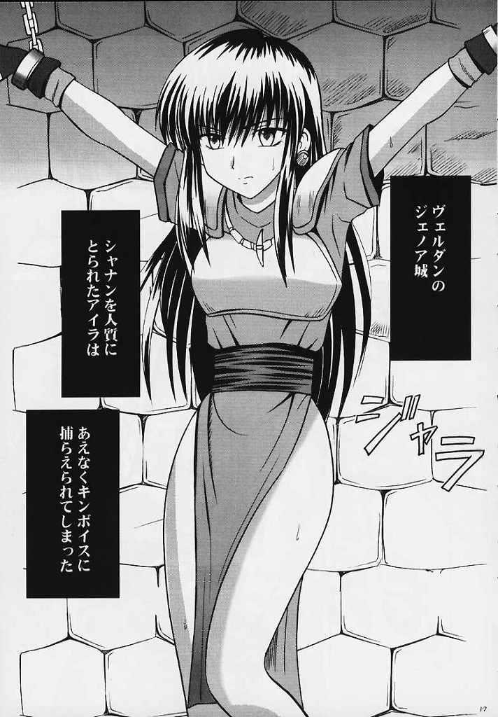 Seisen no Kizuato 14