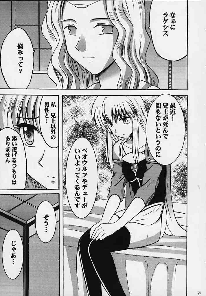 Seisen no Kizuato 24